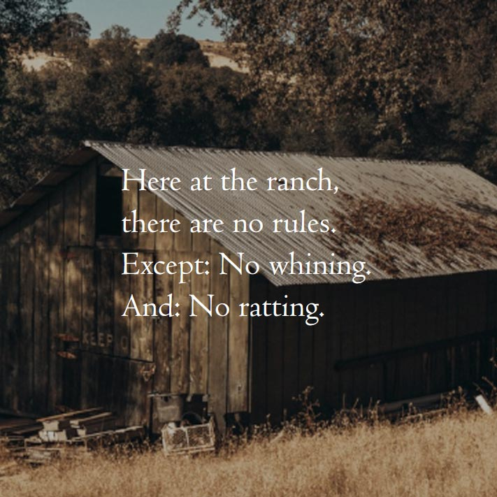 Here at the ranch, there are no rules. Except: No whining. And: No ratting.