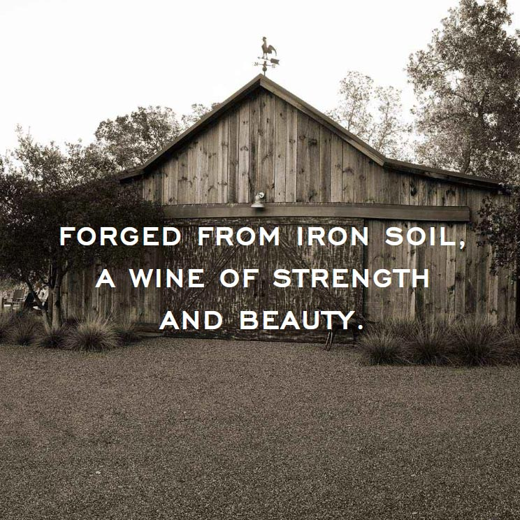 Forged from iron soil, a wine of strength and beauty.